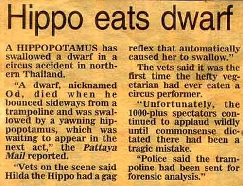 Hippo_nain_article