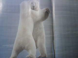 ours danse du figaro